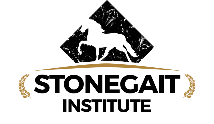Welcome to the Stonegait Institute