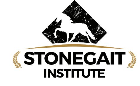 Stonegait Institute